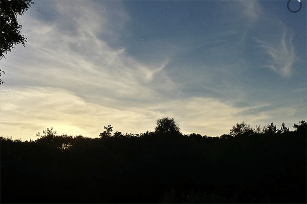 Screen Shot 2015-05-11 at 01.25.53